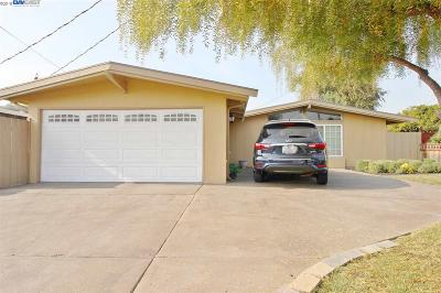 Hayward Single Family Home Pending Show For Backups: 27583 Cliffwood Ave