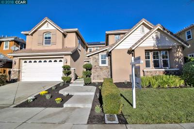 San Ramon Single Family Home For Sale: 5501 Thayer Ln