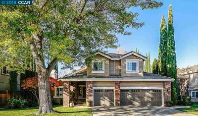 San Ramon Single Family Home New: 168 Canyon Lakes Way
