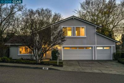 San Ramon Single Family Home New: 9513 Thunderbird Dr