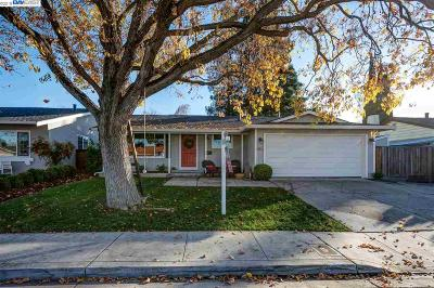 Pleasanton Single Family Home New: 6356 Benner Ct