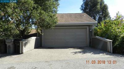 Marin County Single Family Home Active-Reo: 1243 Lattie Ln
