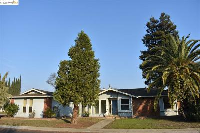 Modesto Single Family Home New-Reo: 3904 Atwood Dr