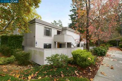 Walnut Creek Condo/Townhouse Active - Contingent: 1317 Stanley Dollar Drive #1