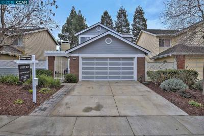 San Ramon Single Family Home For Sale: 902 Springview Circle