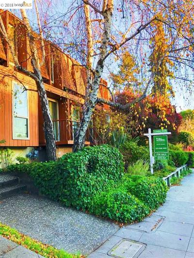 Berkeley Condo/Townhouse Pending Show For Backups: 1411 Spruce St #4