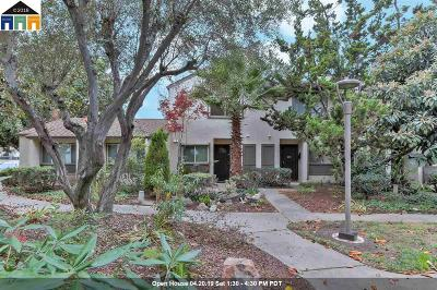 Milpitas Condo/Townhouse For Sale: 1903 Landess Ave