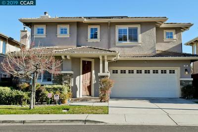 San Ramon Single Family Home For Sale: 44 Terraced Hills Way
