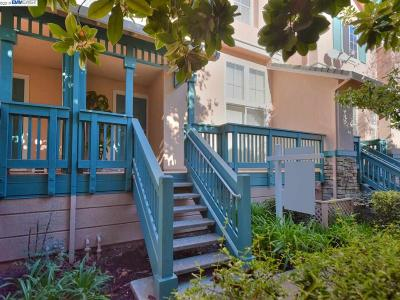 Fremont Condo/Townhouse For Sale: 1146 Starfish