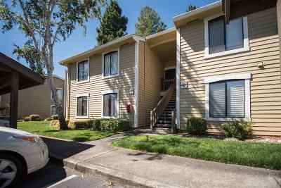 Martinez Condo/Townhouse Active - Contingent: 781 Center Ave