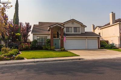 Antioch Single Family Home For Sale: 4542 Buckskin Dr