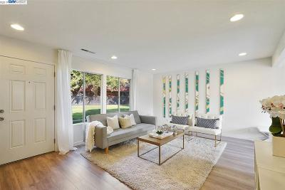 Hayward Condo/Townhouse Pending Show For Backups: 27517 Stromberg Court