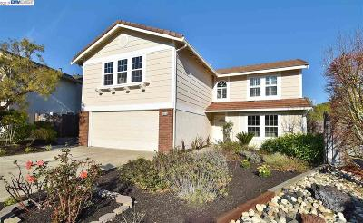 Castro Valley Single Family Home For Sale: 19216 Masterson Pl