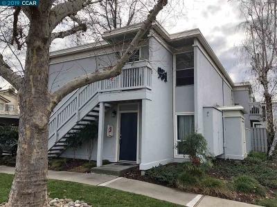 Concord Condo/Townhouse For Sale: 951 Bancroft Rd #109