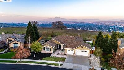 San Ramon Single Family Home For Sale: 10 Henry Ranch Dr