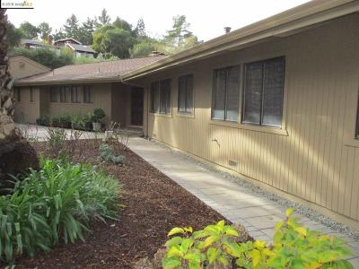 Orinda Single Family Home For Sale: 699 Ironbark Cir