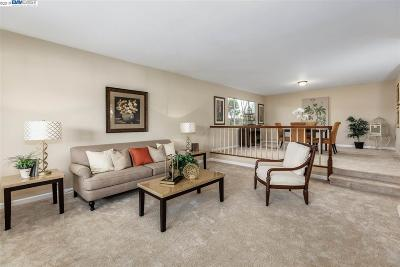 Hayward Single Family Home Pending Show For Backups: 3811 Oakes Dr