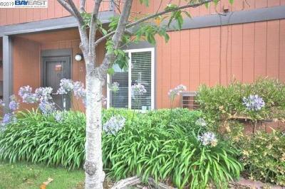 Fremont Rental For Rent: 38627 Cherry Ln #3