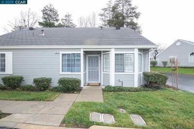 Antioch Single Family Home For Sale: 1517 Plymouth Ln