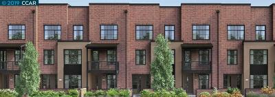 Campbell Condo/Townhouse For Sale: 242 Railway Avenue #Lot 18