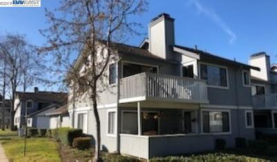 Fremont Condo/Townhouse For Sale: 34648 Musk Ter.