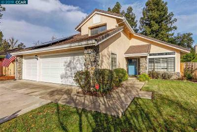 Antioch Single Family Home For Sale: 4837 Ridgeview Dr