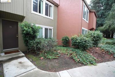 Concord Condo/Townhouse For Sale: 3051 Treat Blvd #74