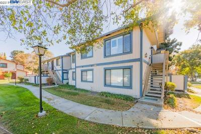 Union City Condo/Townhouse New: 218 Entrada Plz