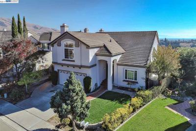 Fremont Single Family Home New: 860 Longfellow Dr