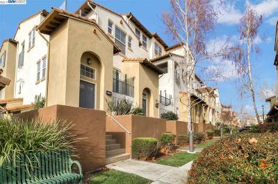 Alamo, Danville, San Ramon, Dublin, Pleasanton, Livermore Condo/Townhouse New: 4117 Clarinbridge Cir