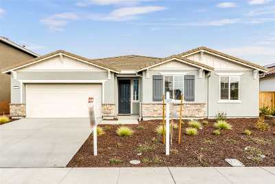 Manteca Single Family Home New: 529 Rotelli