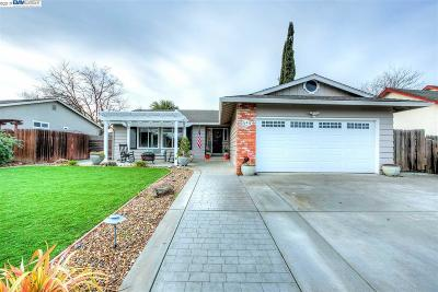 Alamo, Danville, San Ramon, Dublin, Pleasanton, Livermore Single Family Home New: 659 Alameda Dr