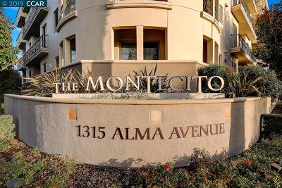 Walnut Creek Condo/Townhouse For Sale: 1315 Alma Drive #314