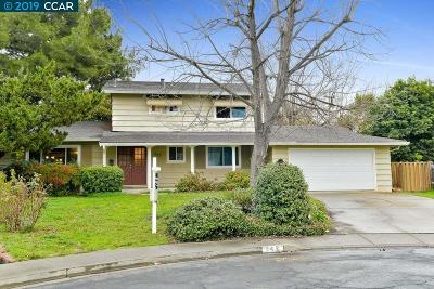 Concord Single Family Home New: 742 San Mateo Ct
