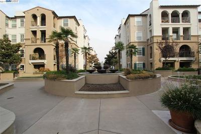 Dublin Condo/Townhouse New: 3385 Dublin Blvd #246