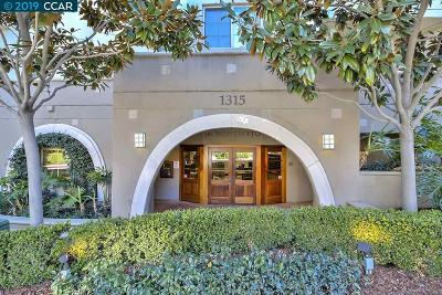 Walnut Creek Condo/Townhouse New: 1315 Alma Ave #135