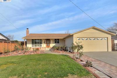 Alamo, Danville, San Ramon, Dublin, Pleasanton, Livermore Single Family Home New: 924 Coronado Way