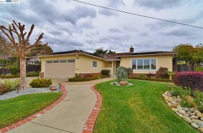 Castro Valley Single Family Home New: 17808 Trenton Dr