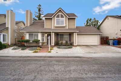 Fremont, Newark, Union City Single Family Home For Sale: 371 Sandstone Dr