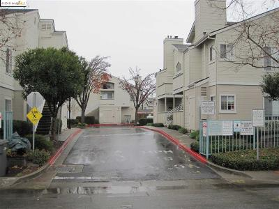 San Leandro Condo/Townhouse New: 1470 Thrush Ave #23