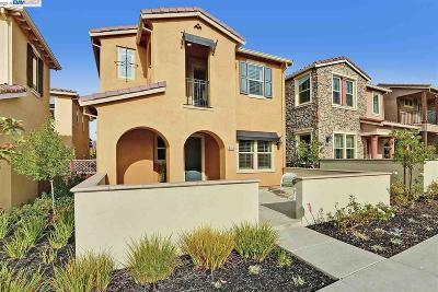 Dublin Single Family Home New: 3158 Alexa Cruz Ter