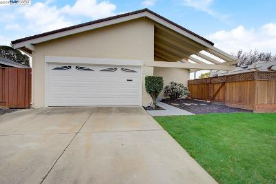 Alamo, Danville, San Ramon, Dublin, Pleasanton, Livermore Single Family Home New: 535 Cedar Dr