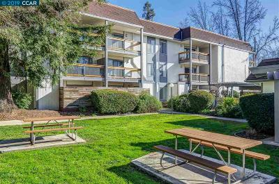 Alamo, Antioch, Brentwood, Clayton, Concord, Danville, Diablo, Discovery Bay, Martinez, Pittsburg, Pleasant Hill, Richmond, San Ramon, Walnut Creek Condo/Townhouse New: 4081 Clayton Rd #333