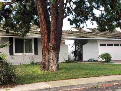 Fremont CA Single Family Home New: $1,200,000