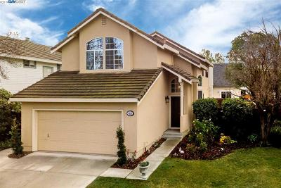 Alamo, Danville, San Ramon, Dublin, Pleasanton, Livermore Single Family Home New: 5333 Starflower Way