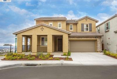Hayward Single Family Home New: 29879 Cantera Dr