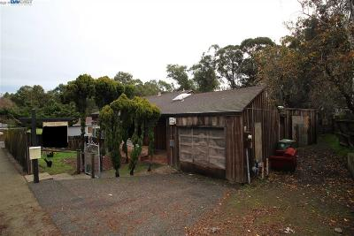 Castro Valley Single Family Home For Sale: 3093 Grove Way
