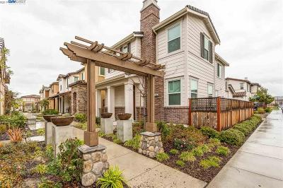 Livermore Single Family Home New: 292 Nimbus Cmn