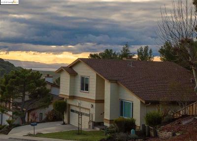 Hayward Single Family Home New: 3496 Skyline Dr