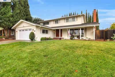 Dublin Single Family Home For Sale: 7349 Hansen Dr